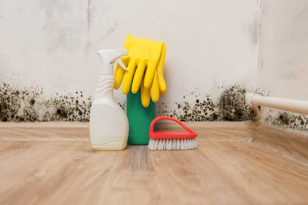 How to Test for Mold copy-Wellington Mold Remediation & Water Damage Restoration Services-We offer home restoration services, water damage restoration, mold removal & remediation, water removal, fire and smoke damage services, fire damage restoration, mold remediation inspection, and more.